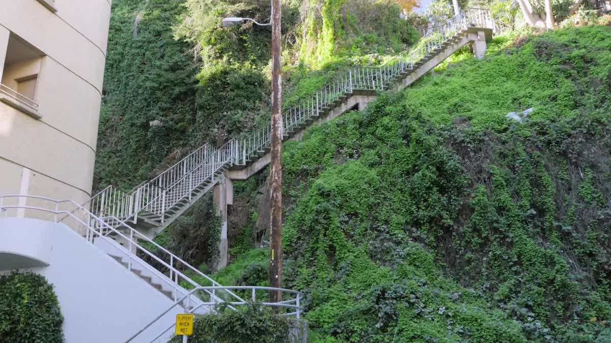 Filbert Steps Image