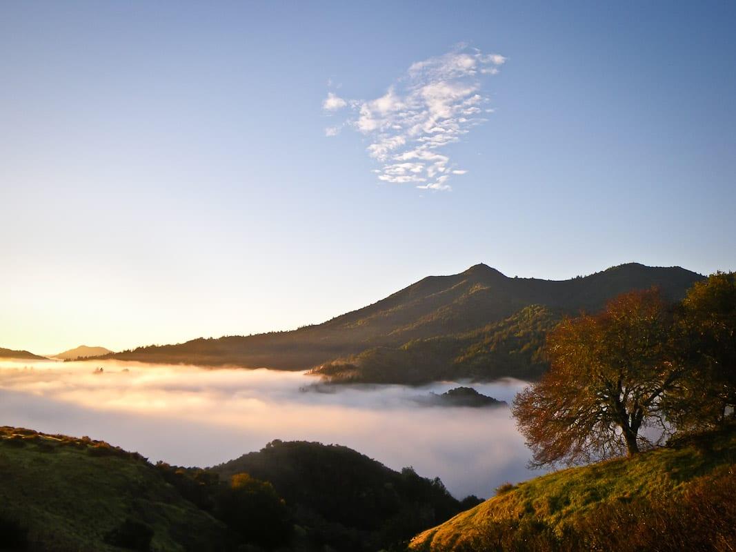Mount Tamalpais Image